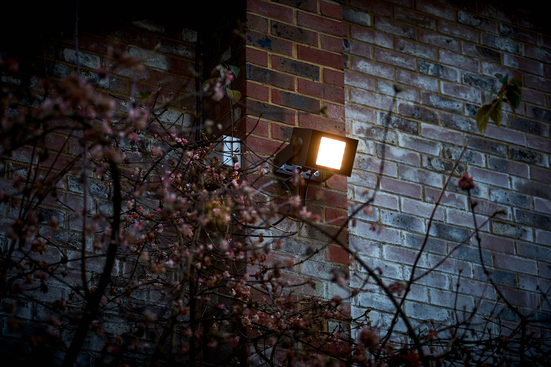 SCULPdot floodlights illuminate the grounds of St Marys Ascot